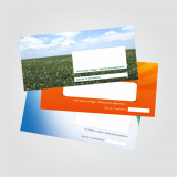 carnê de pagamento personalizado para empresas
